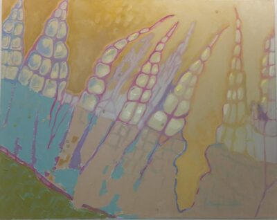 Peristome teeth on the capsule of a moss and spores oil on canvas by Alison C Dibble