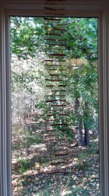 wood and hemp string ladder in front of a window