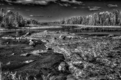 MDI Black and White infared nature photos by Stephen Greenberg