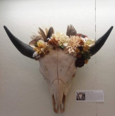 Bison skull with dried flowers
