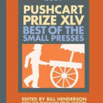Photo of book 2021 Pushcart prize book